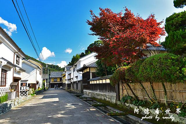 松山-大洲D810 138.JPG
