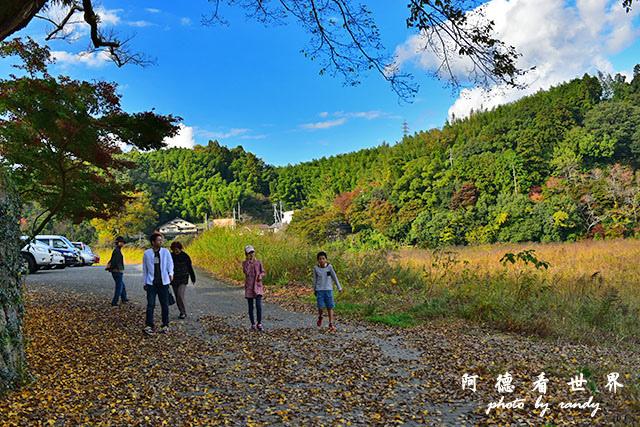 松山-大洲D810 185.JPG