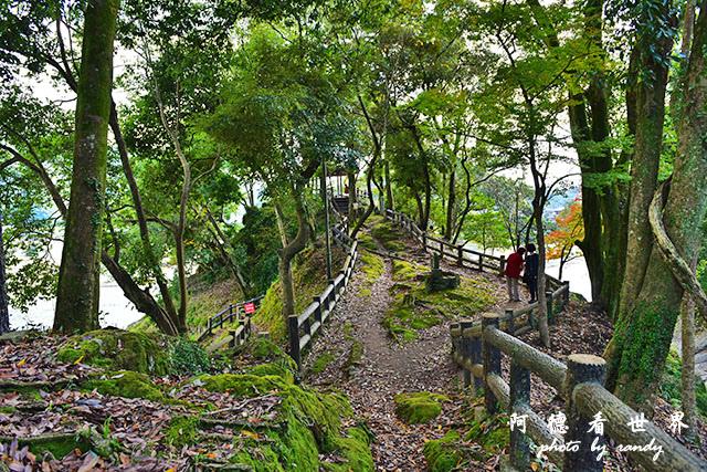 松山-大洲D810 187.JPG