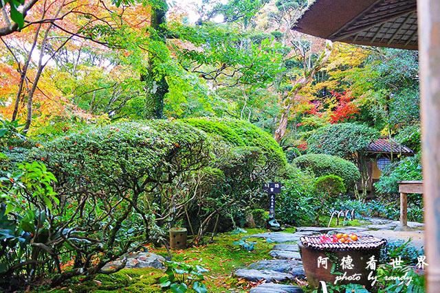 松山-大洲P7700 234.JPG