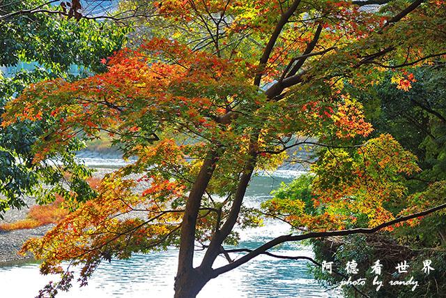 松山-大洲P7700 239.JPG