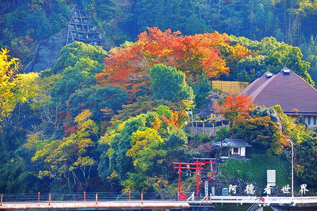 松山-大洲P7700 242.JPG