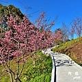 福壽山農場D810 016.JPG