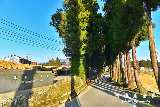 福壽山農場D810 081.JPG