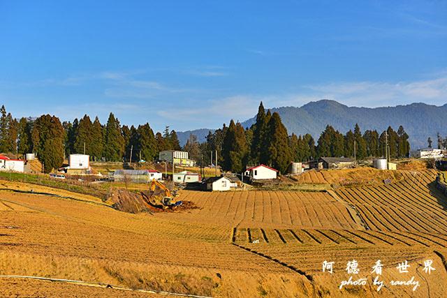 福壽山農場D810 084.JPG