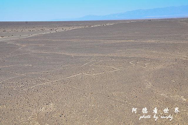 nazca2D7 025.JPG