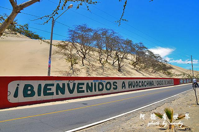 huacachinaD7 033.JPG