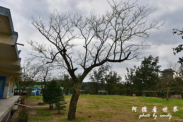金山青年活動中心俺0301D810 021.JPG