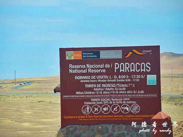 paracasP77 458.JPG