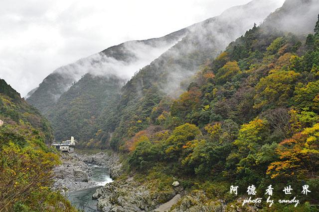 大步危-祖谷D810 112.JPG