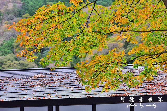 琴平-高松D810 047.JPG
