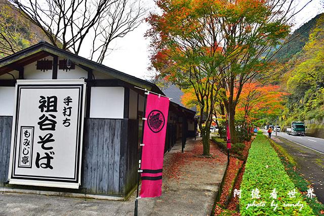 琴平-高松D810 055.JPG
