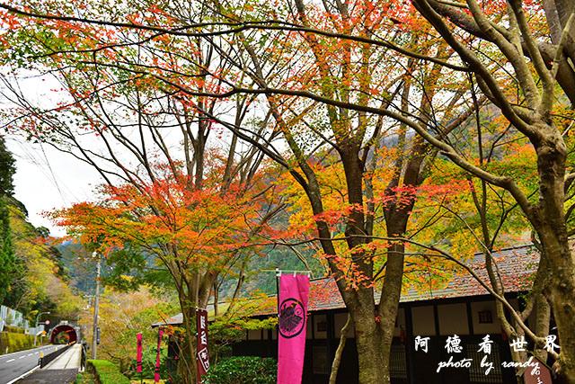琴平-高松D810 056.JPG