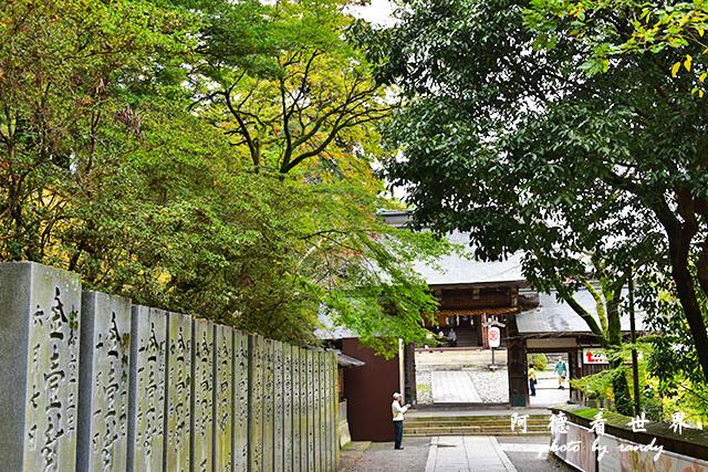 琴平-高松D810 167.JPG
