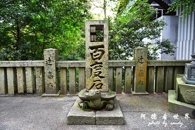 琴平-高松D810 193.JPG