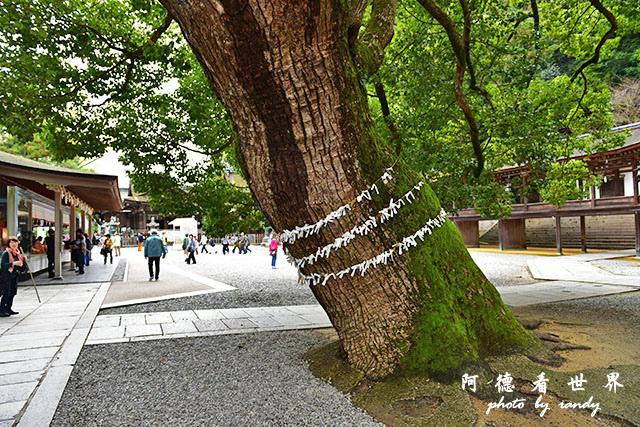 琴平-高松D810 202.JPG
