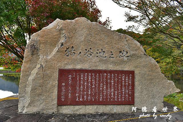 小豆島D810 261.JPG