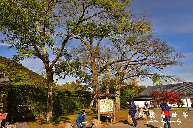 栗林公園-德島D810 001.JPG
