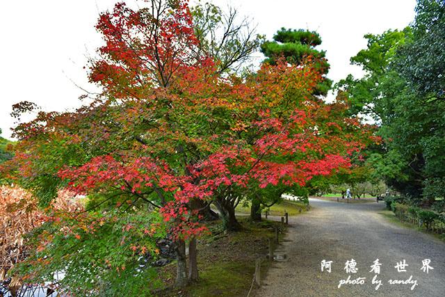 栗林公園-德島D810 076.JPG