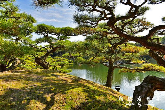 栗林公園-德島D810 126.JPG