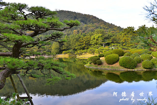 栗林公園-德島D810 150.JPG
