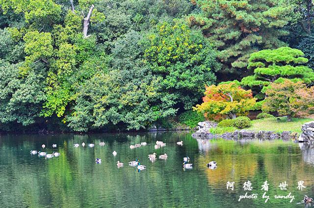 栗林公園-德島D7000 003.JPG