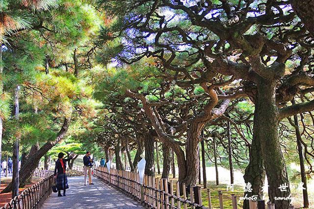 栗林公園-德島P7700 060.JPG