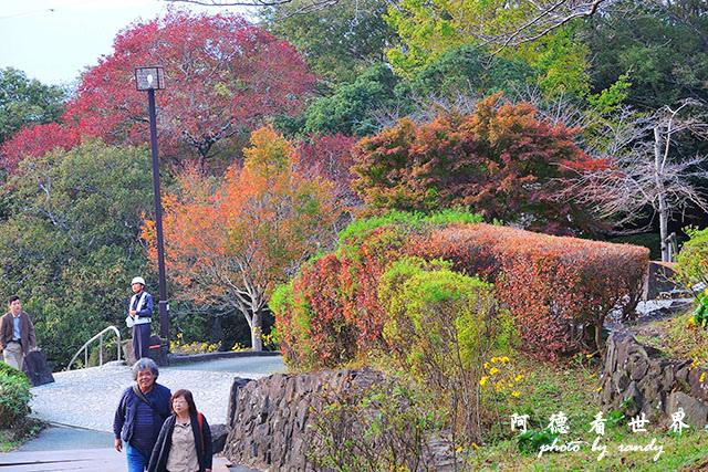 栗林公園-德島P7700 157.JPG