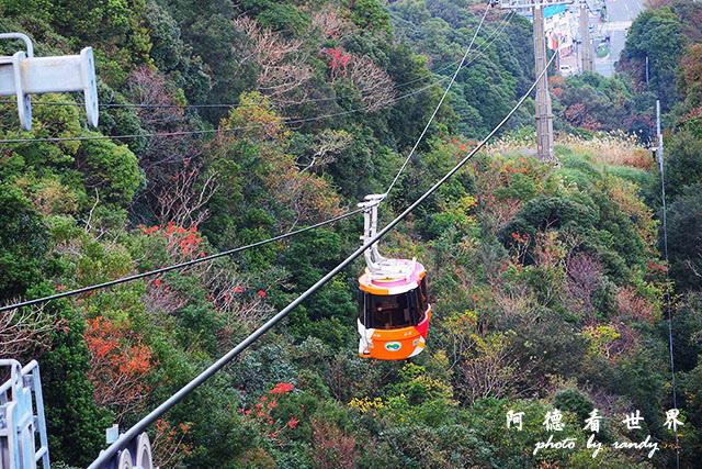 栗林公園-德島P7700 169.JPG