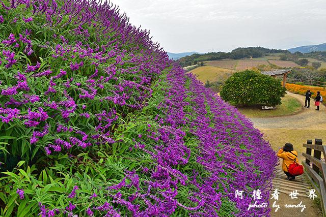 淡路島-舞子D810 050.JPG