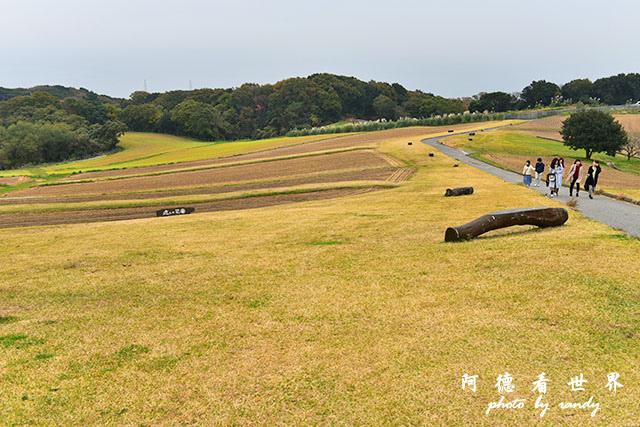 淡路島-舞子D810 089.JPG