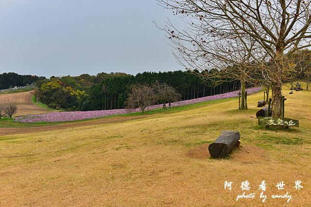 淡路島-舞子D810 087.JPG