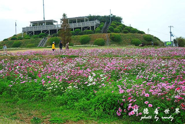 淡路島-舞子P7700 023.JPG