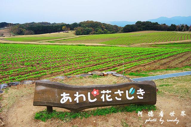 淡路島-舞子P7700 053.JPG