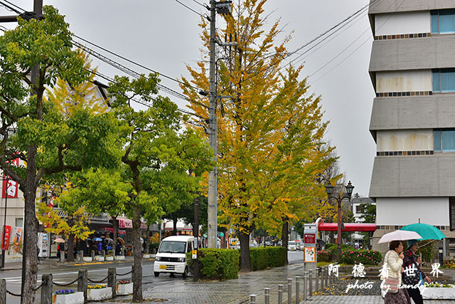 直島-倉敷D810 161.JPG