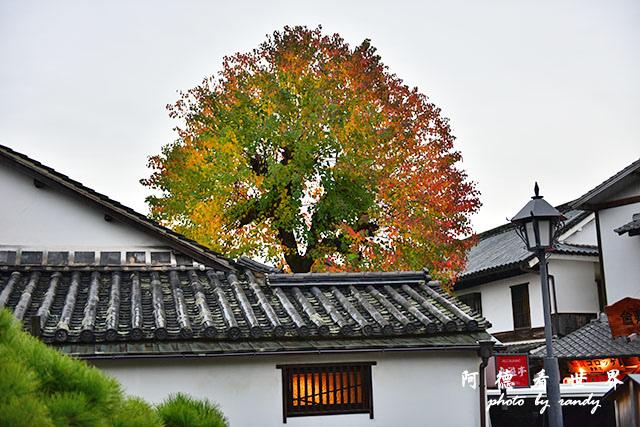 直島-倉敷D810 248.JPG
