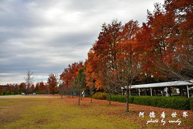 岡山-廣島D810 144.JPG