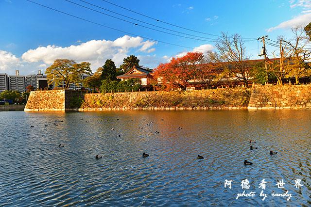 岡山-廣島D810 231.JPG