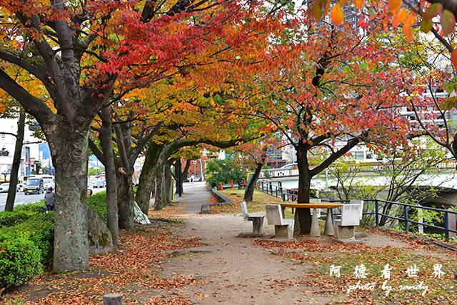 廣島平和公園D810 017.JPG