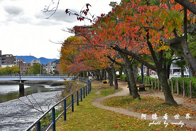 廣島平和公園D810 014.JPG