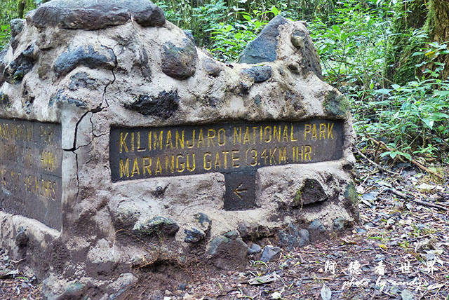 kilimanjaroFZ200 (11).JPG