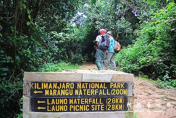 kilimanjaroP7700 030.JPG