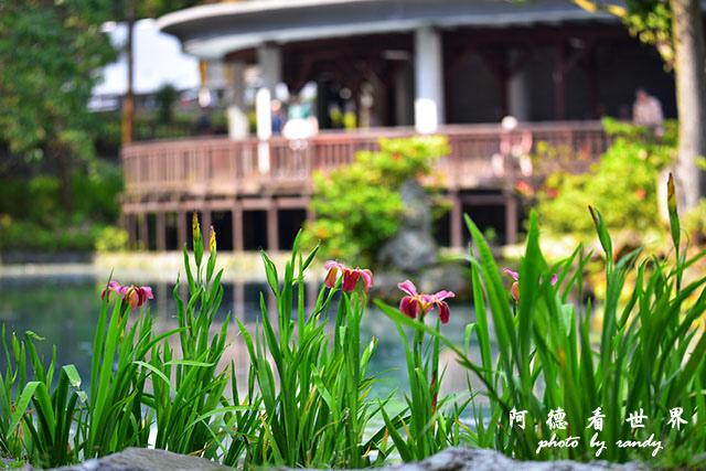 前山公園0405 168.JPG