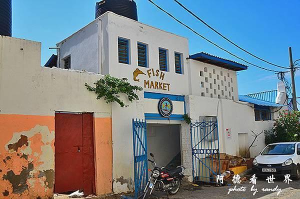 mombasa2D7000 175.JPG