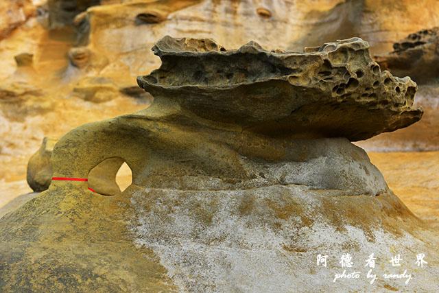 象鼻岩D810 047.JPG
