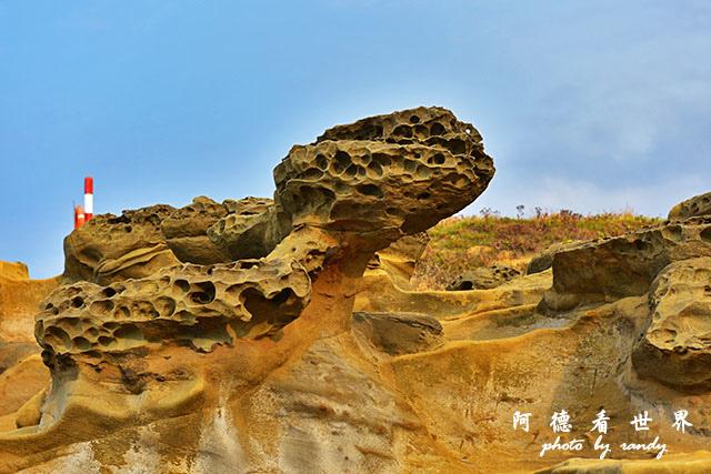 象鼻岩D810 048.JPG