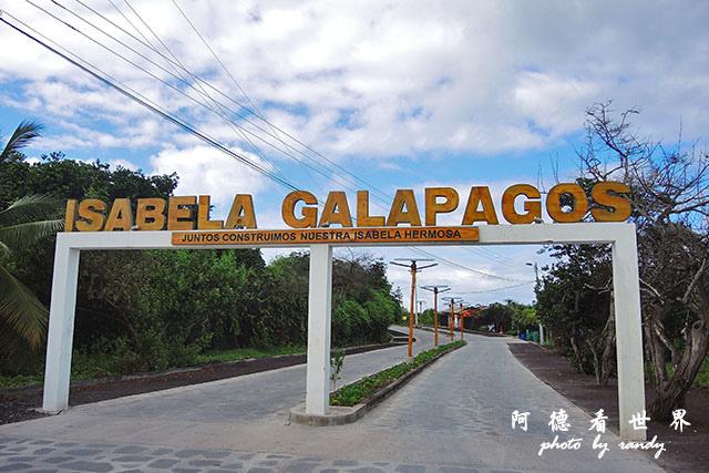 galapagos7P7700 021.JPG
