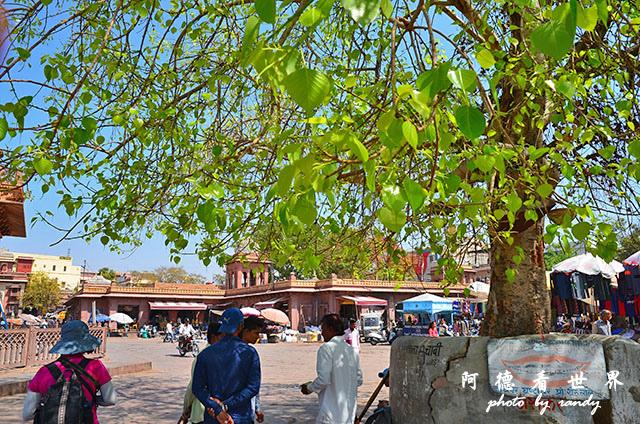 jodhpur3-mandore-palaceD7000 055.JPG