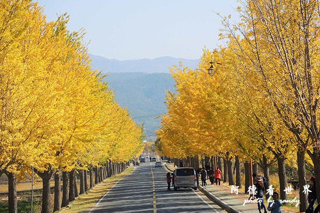 慶州1P7700 010.JPG