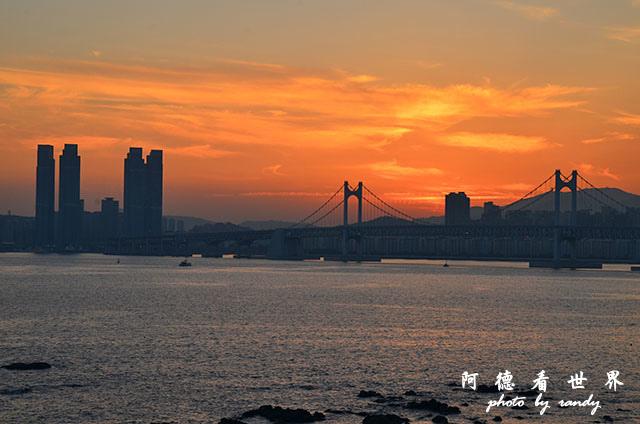 釜山3D7000 220.JPG